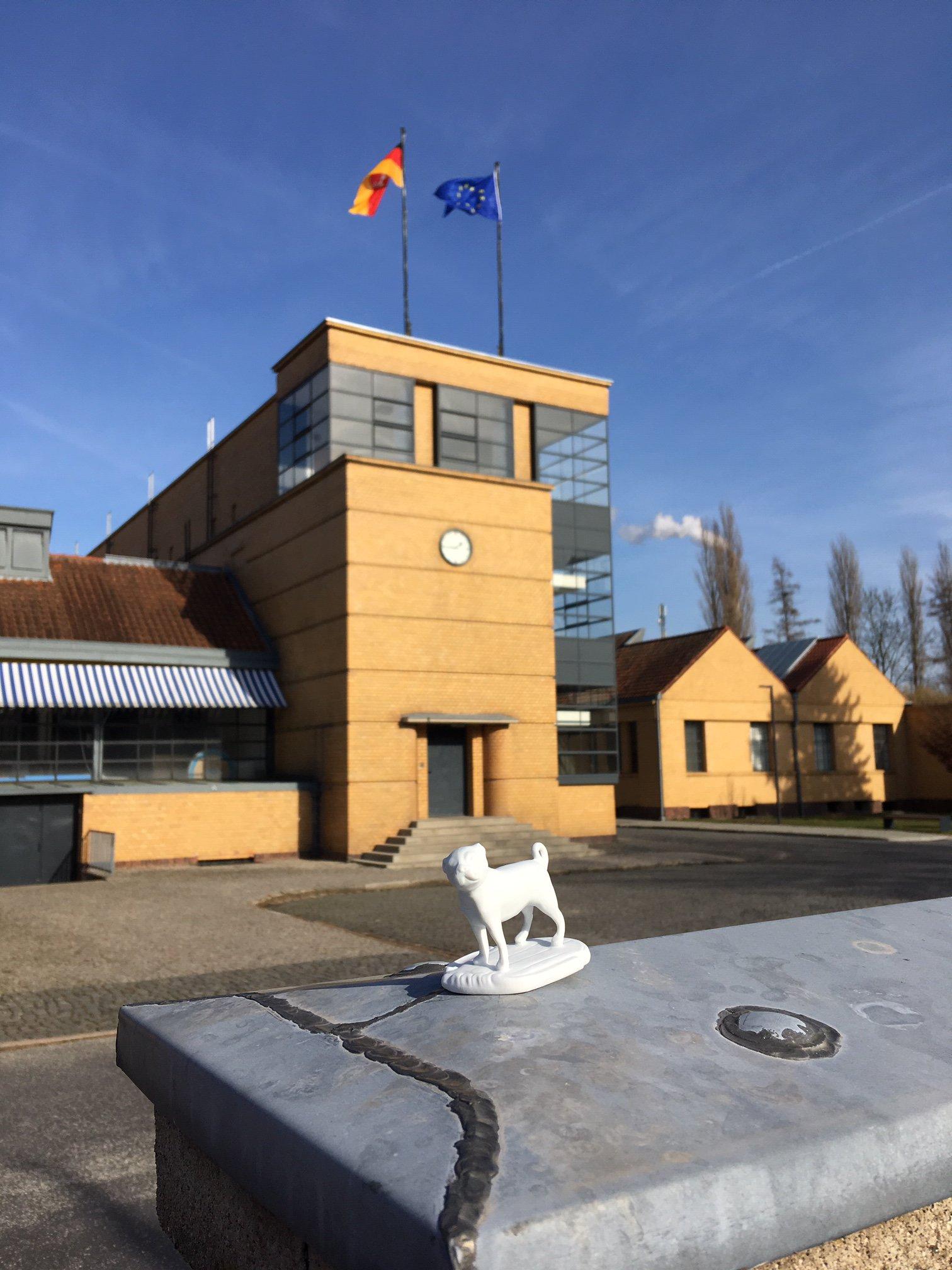 Porzellanmops im Vordergrund vor einem Gebäude